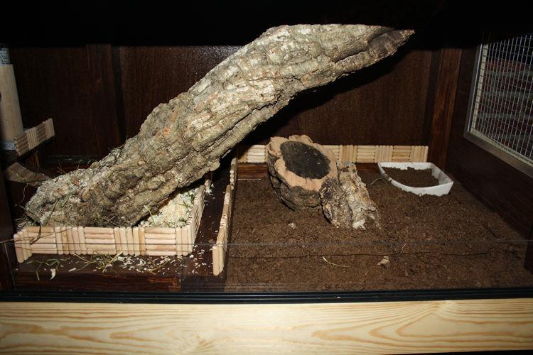 Mit Dübeln auf Kanthölzer geklebte Rennstrecken, ein abgetrennter Bereich mit 4-5cm Nager-Torf, Nagerklo und Korkröhren. Mittig landet die Korkröhre von Ebene 1b in Heu/Streu.