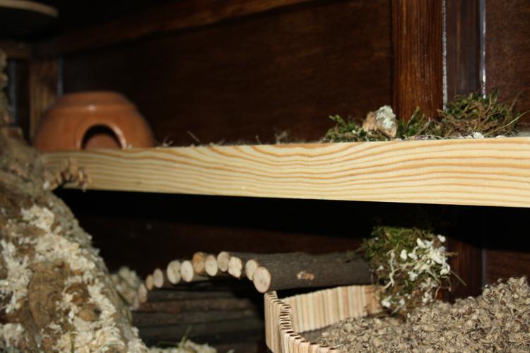 Hier sieht man noch mal die angesprochene Hamster Höhle aus Ton.