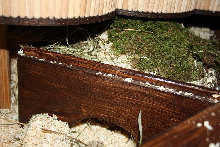 Und hier noch der Eingang des Hamster Hauses. 30x40x7 cm, 3 Kammern und 2 Eingänge. Unten offen, damit Flocke darunter Buddeln kann wie er mag. Diese rechte Seite ist ca 35cm tief mit Einstreu Gemisch gefüllt.